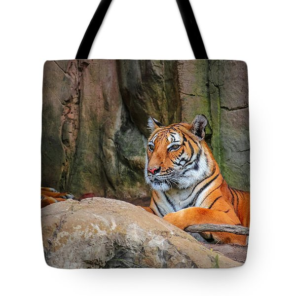 Fort Worth Zoo Tiger Tote Bag