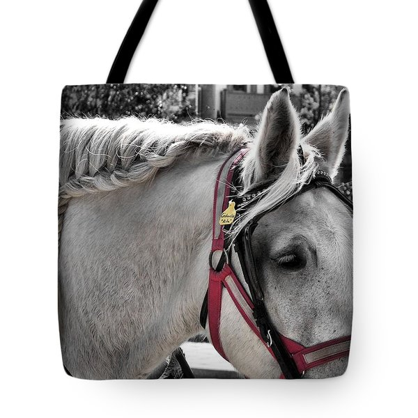 French Braid Tote Bag by JAMART Photography