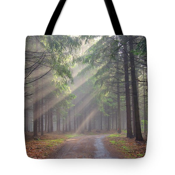 God Beams - Coniferous Forest In Fog Tote Bag by Michal Boubin