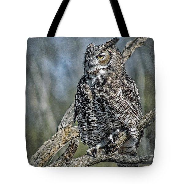 Tote Bag featuring the photograph Great Horned Owl by Elaine Malott