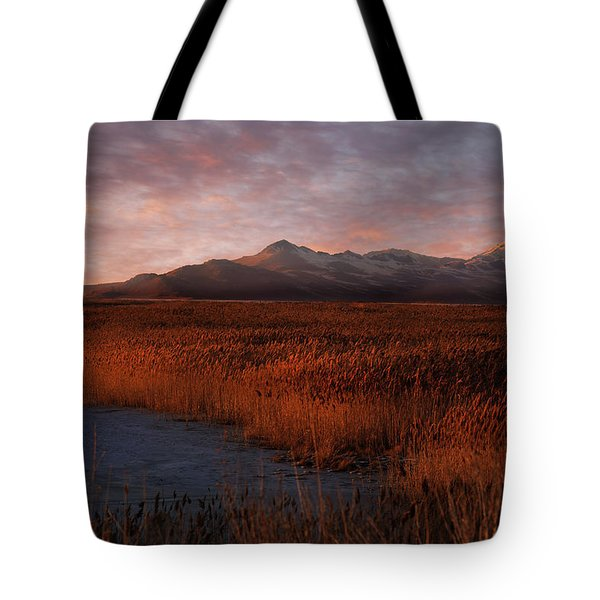 Great Salt Lake Tote Bag