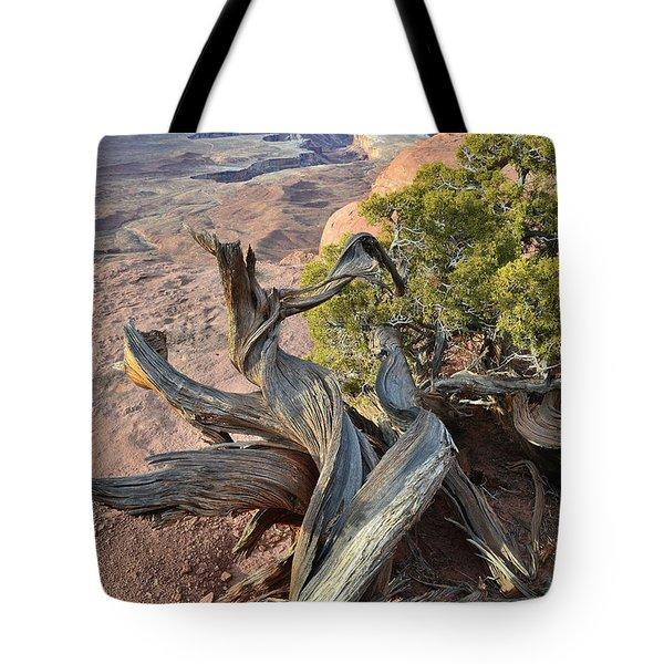 Green River Overlook Tote Bag