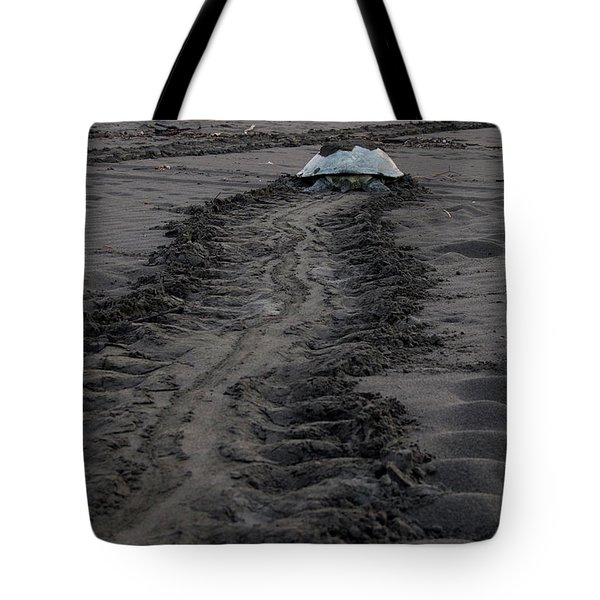 Green Sea Turtle Returning To Sea Tote Bag