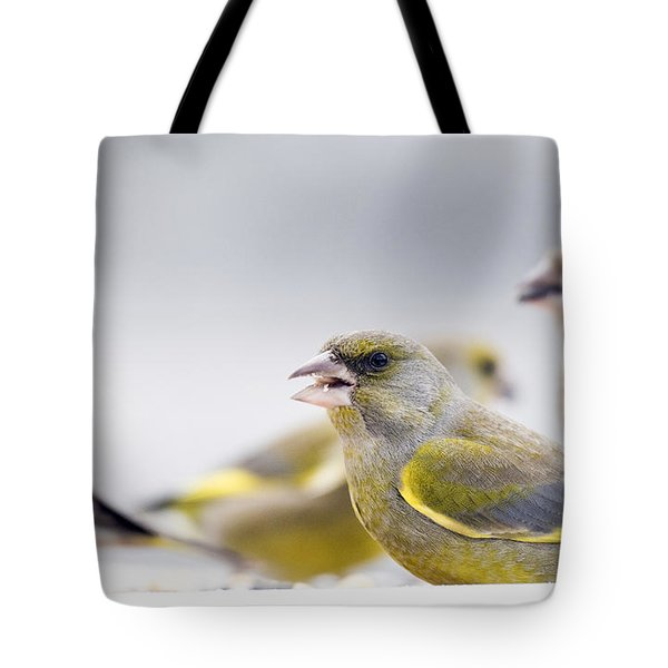 Greenfinches Tote Bag