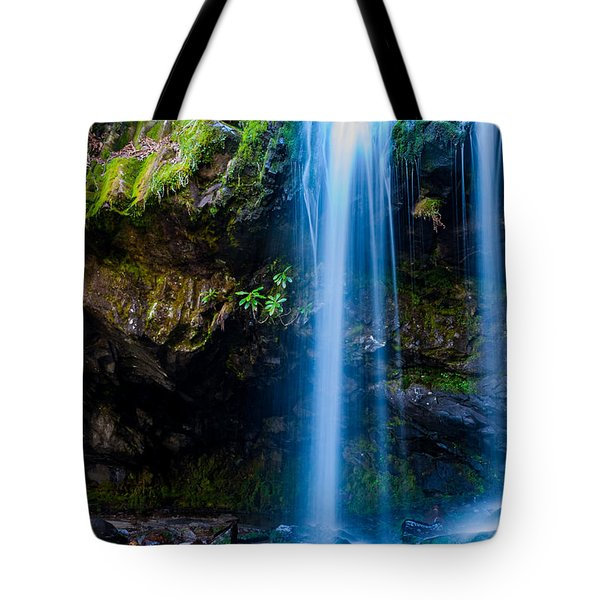 Tote Bag featuring the photograph Grotto Falls by Jay Stockhaus