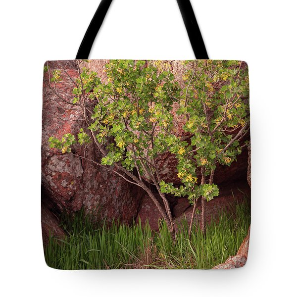 Tote Bag featuring the photograph Hidden by Iris Greenwell