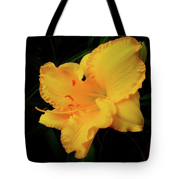 Isolation Tote Bag