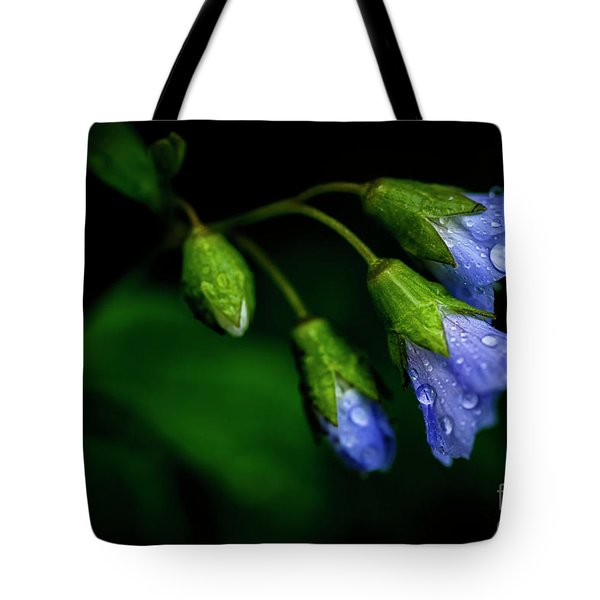 Tote Bag featuring the photograph Jacobs Ladder by Thomas R Fletcher