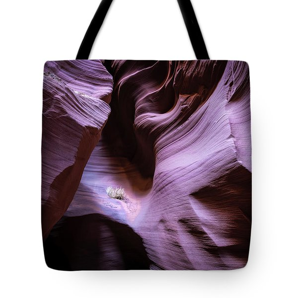 Just The Light Tote Bag