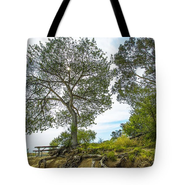 Tote Bag featuring the photograph Lake Skinner Regional Park Open-space District by Richard J Thompson