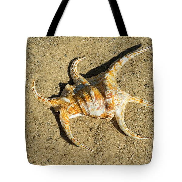 Tote Bag featuring the photograph Lambis Arthritica Spider Conch by Frank Wilson