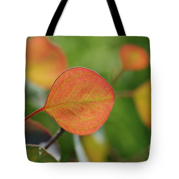 Leaf Tote Bag by Catherine Lau
