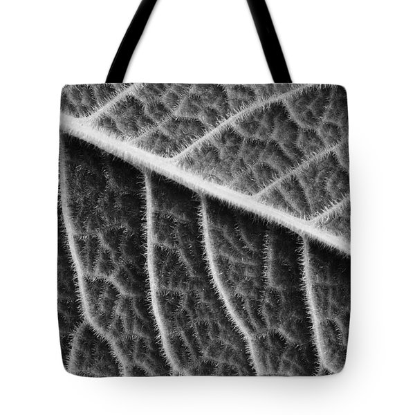 Tote Bag featuring the photograph Leaf by Chevy Fleet