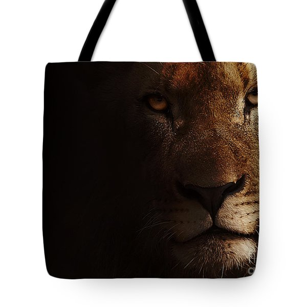 Tote Bag featuring the photograph Lion by Christine Sponchia