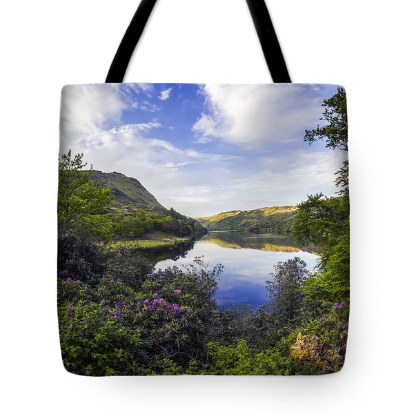 Llyn Gwynant Tote Bag by Ian Mitchell