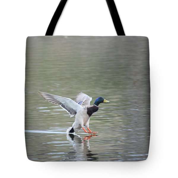 Tote Bag featuring the photograph Mallard Duck Male by Margarethe Binkley