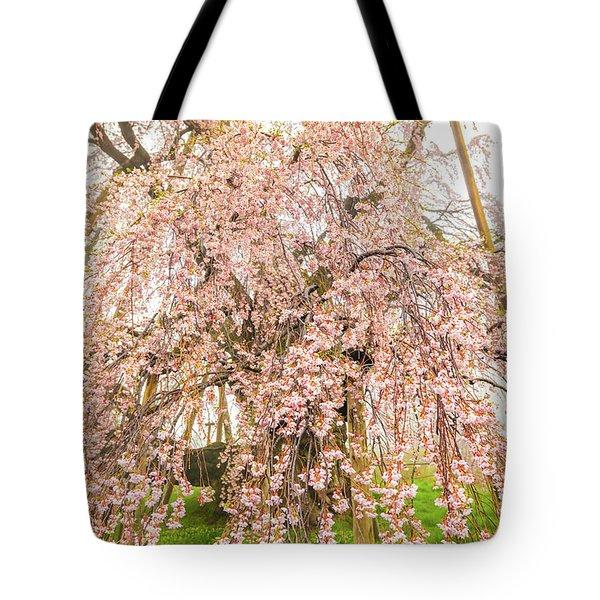 Tote Bag featuring the photograph Miharu Takizakura Weeping Cherry03 by Tatsuya Atarashi