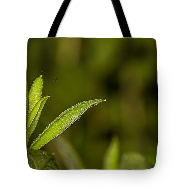 Tightrope Tote Bag by Brian Wright
