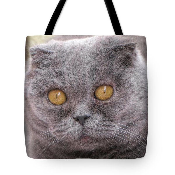 My Friend Tote Bag by Yury Bashkin