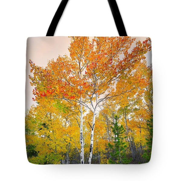 Tote Bag featuring the photograph Only A Memory by Tim Reaves