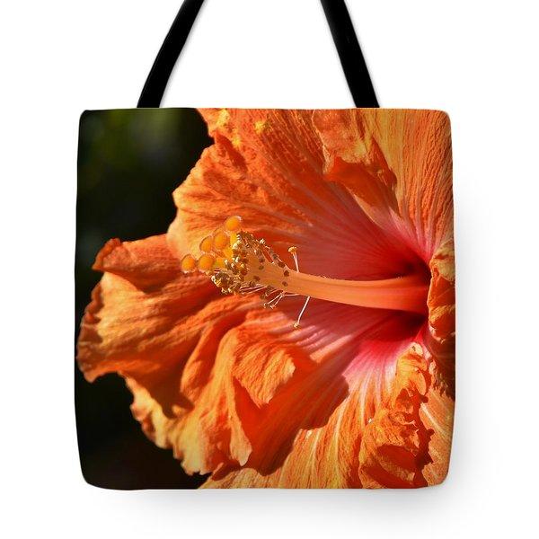 orange Hibiscus blossom Tote Bag by Werner Lehmann