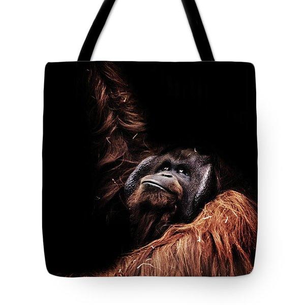 Orangutan Tote Bag by Martin Newman