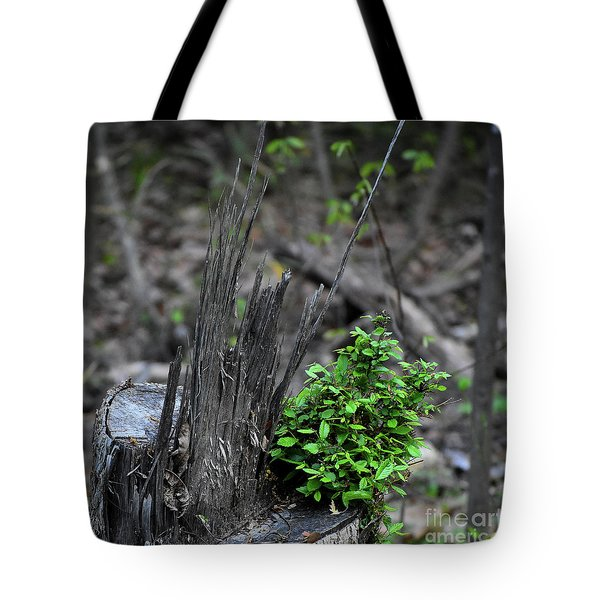Tote Bag featuring the photograph Persistence by Skip Willits