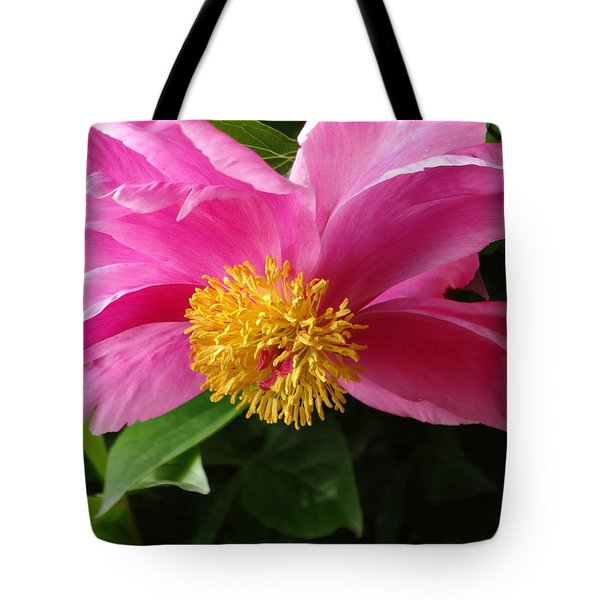 Pink Peony Tote Bag by Rebecca Overton