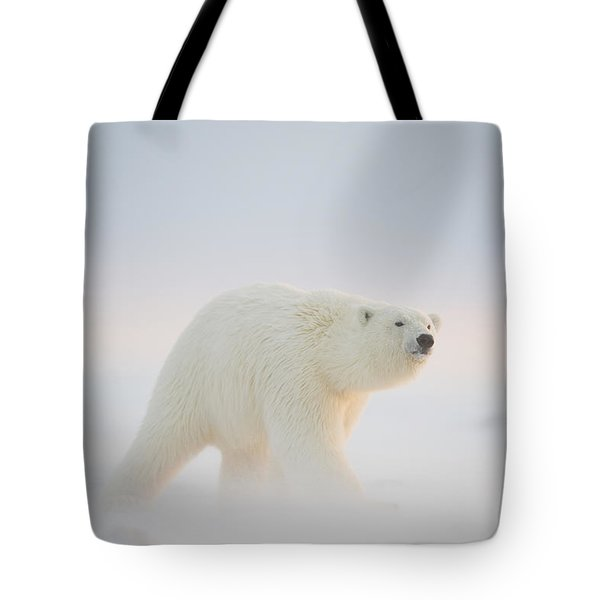 Polar Bear  Ursus Maritimus , Young Tote Bag by Steven Kazlowski