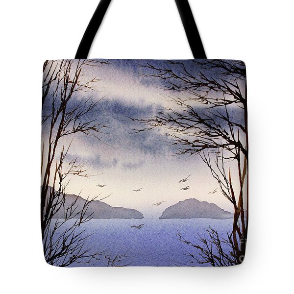 Tote Bag featuring the painting Quiet Shore by James Williamson
