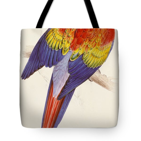 Red And Yellow Macaw Tote Bag by Edward Lear