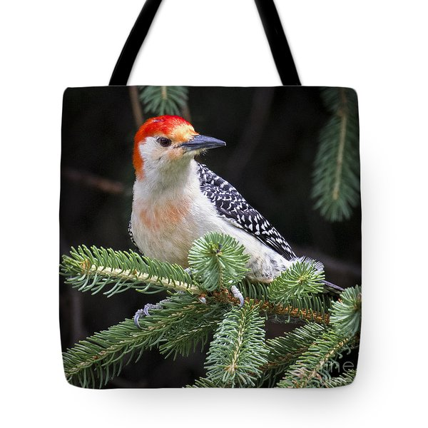 Tote Bag featuring the photograph Red-bellied Woodpecker by Ricky L Jones