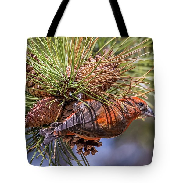 Red Crossbill Tote Bag by Michael Cunningham