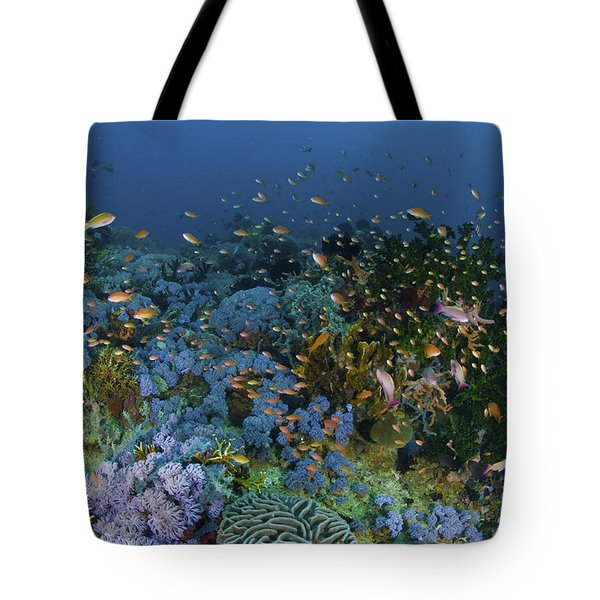 Reef Scene With Coral And Fish Tote Bag by Mathieu Meur