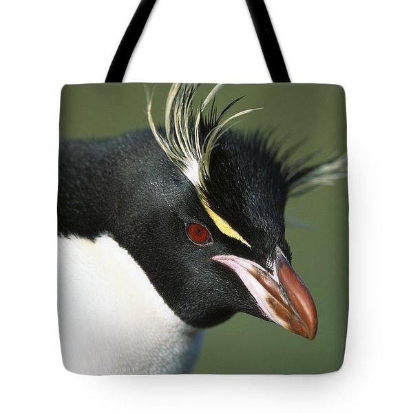 Rockhopper Penguin Eudyptes Chrysocome Tote Bag by Tui De Roy
