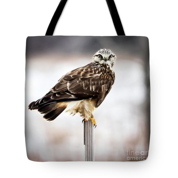 Tote Bag featuring the photograph Rough-legged Hawk by Ricky L Jones