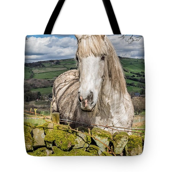 Tote Bag featuring the photograph Rustic Horse by Nick Bywater
