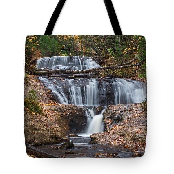 Sable Falls Tote Bag