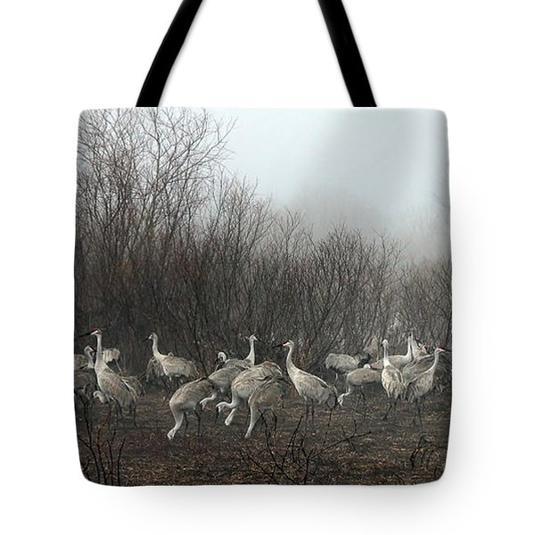 Sandhill Cranes And The Fog Tote Bag by Farol Tomson