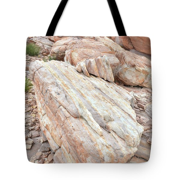 Tote Bag featuring the photograph Sandstone Slope In Valley Of Fire by Ray Mathis