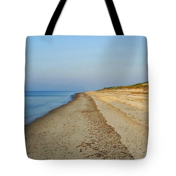 Sandy Neck Beach Tote Bag