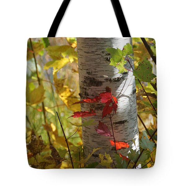 Tote Bag featuring the photograph Seeing Red by Judy  Johnson