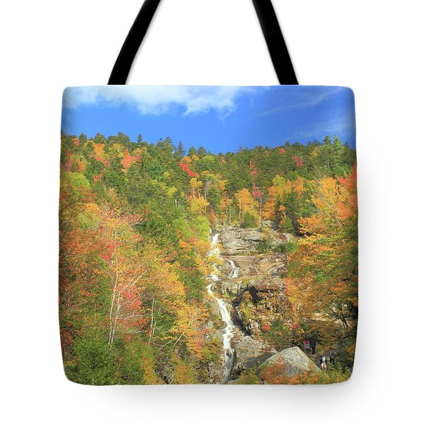 Silver Cascade In Autumn Tote Bag