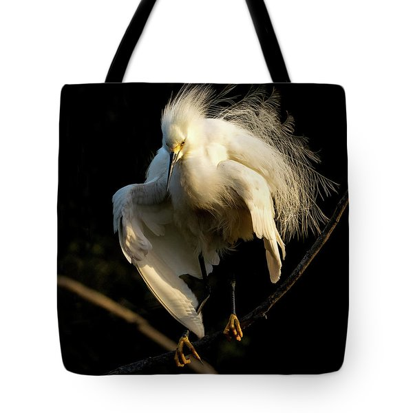 Snowy Beauty Tote Bag