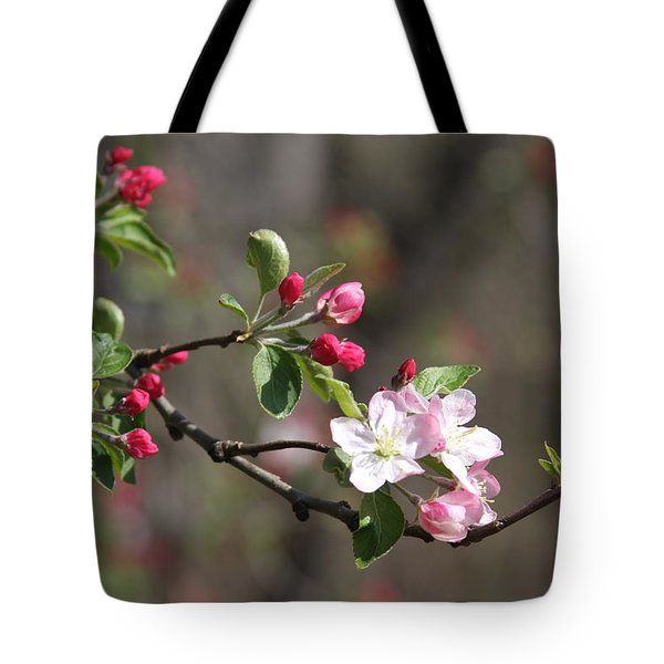 Tote Bag featuring the photograph Blossom And Hope by Vadim Levin