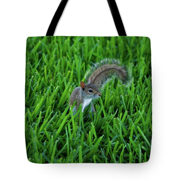 Tote Bag featuring the photograph 2- Squirrel by Joseph Keane