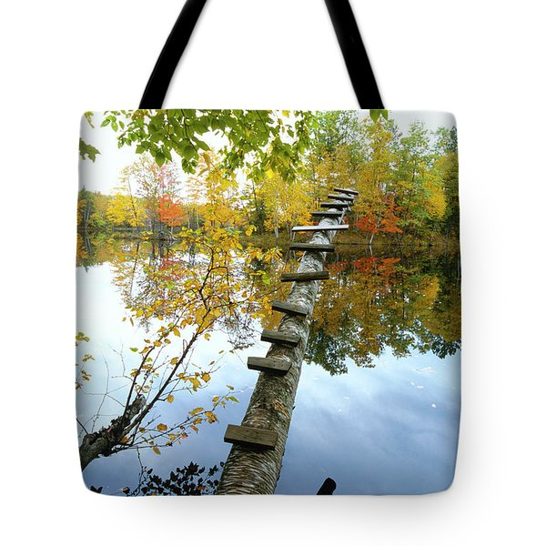 Stepping Tree - Northwoods Wisconsin Tote Bag