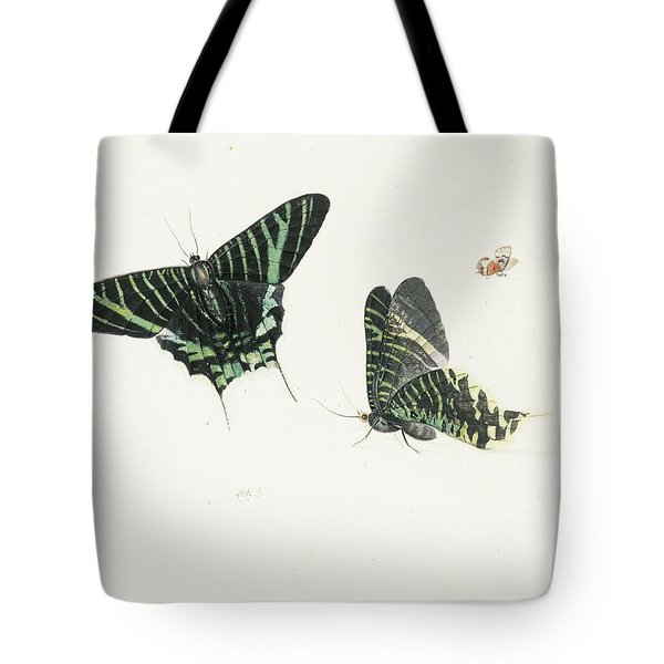 Studies Of Two Butterflies Tote Bag by Anton Henstenburgh