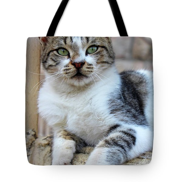 Tote Bag featuring the photograph The Wait by Munir Alawi