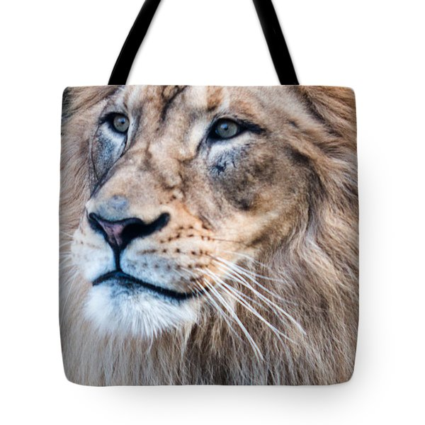 Tote Bag featuring the photograph Those Eyes by Cathy Donohoue